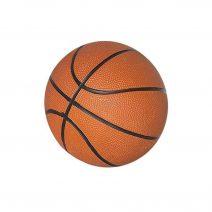 7 In Mini Basketball