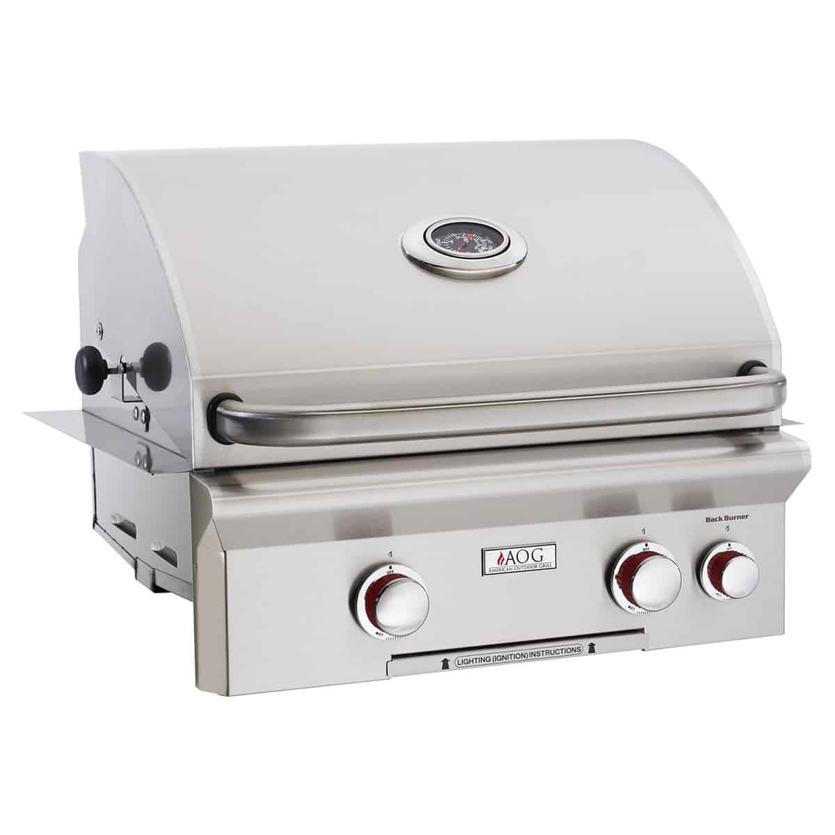 American Outdoor Grill T-Series 24-Inch 2-Burner Built-In ...